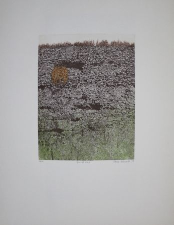 Eau-Forte Et Aquatinte Vernunft - Fiori le mura