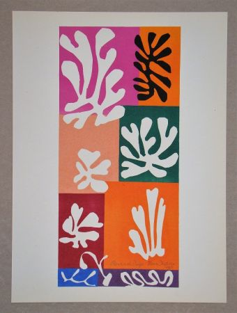 Lithographie Matisse (After) - Fleur De Neige - 1951