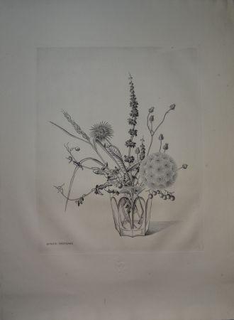 Pointe-Sèche Hasegawa - Fleurs d'automne