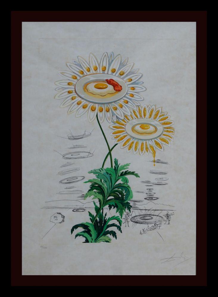 Gravure Dali - Flora Dalinae Chrysanthemum