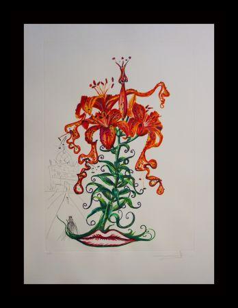 Gravure Dali - Florals Tiger Lilies
