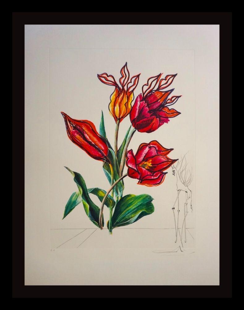Gravure Dali - Florals Tulips Girafe en Feu