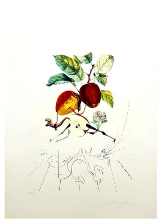 Lithographie Dali - Flordali - Pomme au Dragon