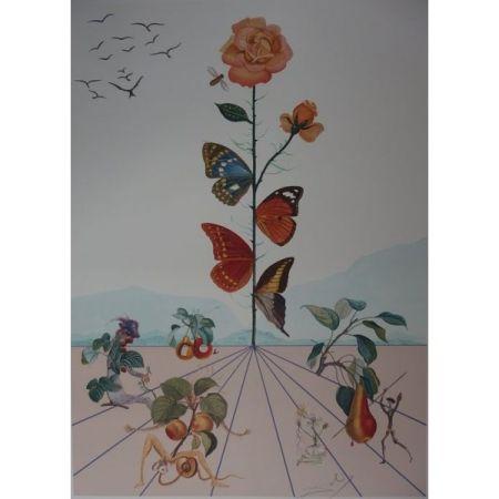 Lithographie Dali - Flordali II : la rose papillon
