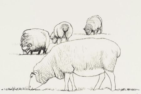 Lithographie Moore - Four Sheep Grazing