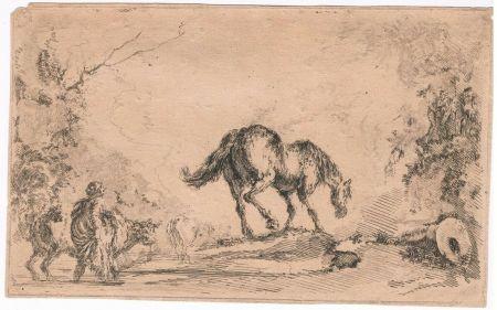 Gravure Della Bella - Free Horse, from
