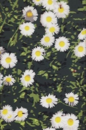 Multiple Opie - French Landscapes: Daisies