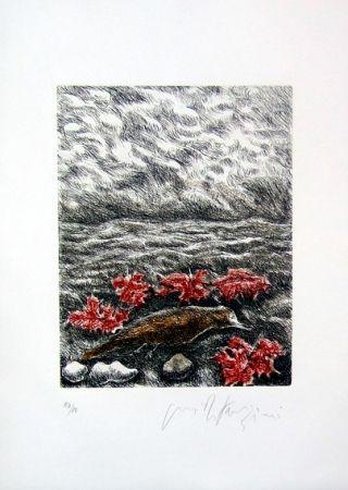 Livre Illustré Fazzini - Gabbiani