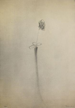 Pointe-Sèche Hernandez Pijuan - Gerro i flor (Vase and Flower)