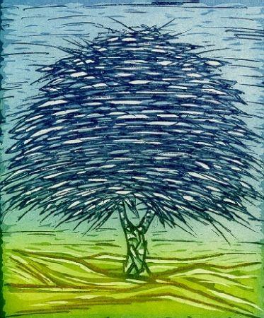 Livre Illustré Rossello - Gli alberi della memoria