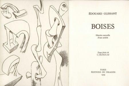 Livre Illustré Cardenas - GLISSANT (Édouard). Boises. Histoire naturelle d'une aridité.
