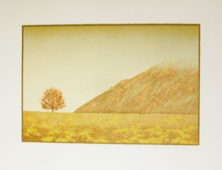 Lithographie Rodrigo - Hace fresco