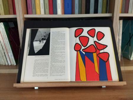 Livre Illustré Calder - Hommage