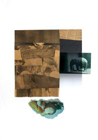 Lithographie Rauschenberg - Horsefeather Thriteen X