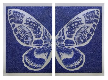 Sérigraphie Robierb - Hybrid Silver Butterfly l on Blue