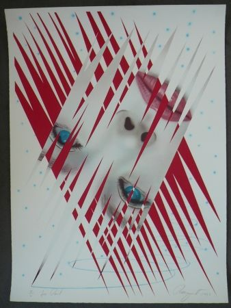 Lithographie Rosenquist - Ice Point