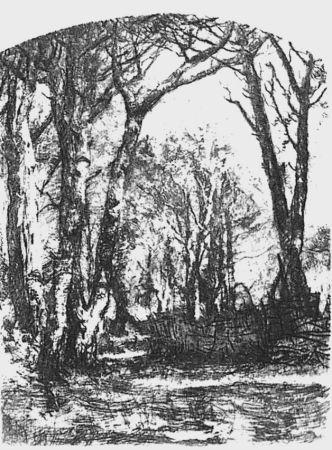 Eau-Forte Bianchi - Il bosco