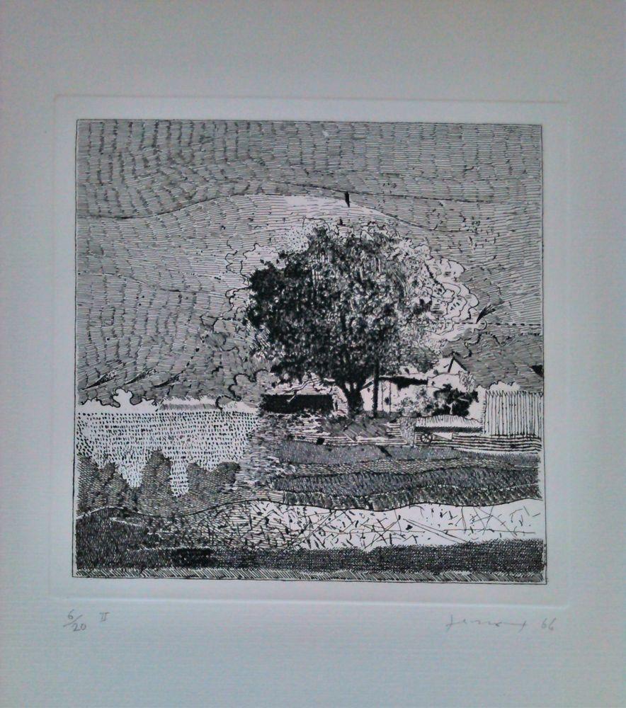 Eau-Forte Ferroni - Il grande albero