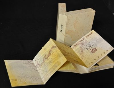 Livre Illustré Texier - In situ