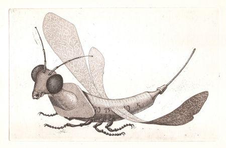 Eau-Forte Et Aquatinte Gondard - Incongruités. Recueil de gravures inventés...