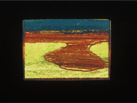 Sérigraphie Hodgkin - Indian Views Suite – Plate L