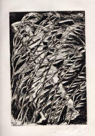 Livre Illustré Fazzini - Inni