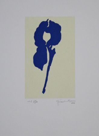 Aquatinte Hernandez Pijuan - Iris blau VIII / Blue Iris VIII