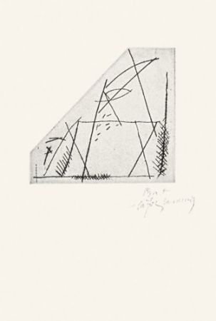 Pointe-Sèche Ràfols Casamada - Jardí-4