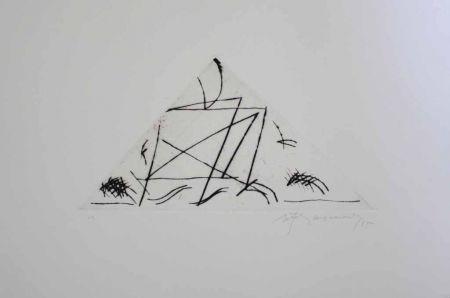 Gravure Ràfols Casamada - Jardí 5