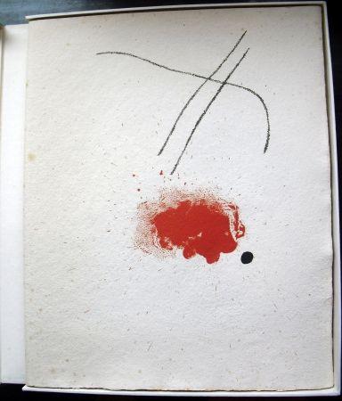 Livre Illustré Miró - Je Travaille Comme Un Jardinier