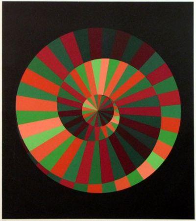 Sérigraphie Vasarely - Kraft Und Natur