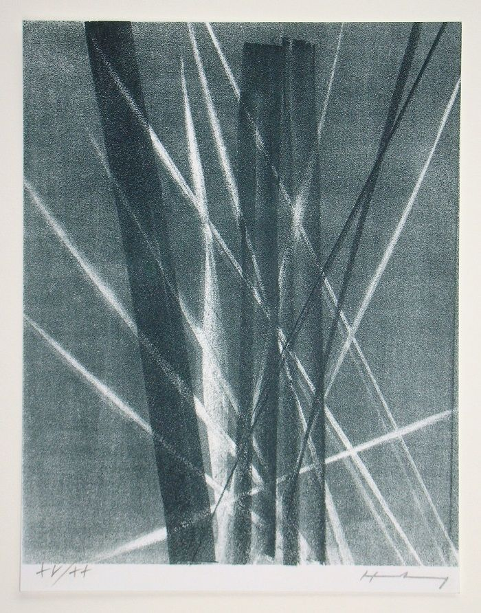 Lithographie Hartung -  L 1966 - 40