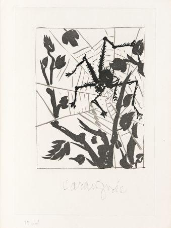 Gravure Picasso - L' Araignée