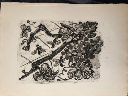 Aquatinte Picasso - La guêpe