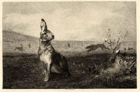 Gravure Bracquemond - La lièvre (The Hare)