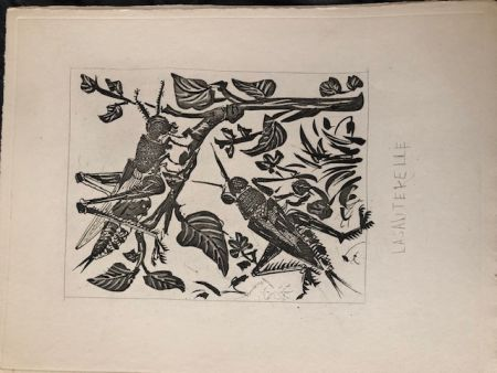 Aquatinte Picasso - La sauterelle