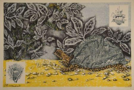 Lithographie Lurcat - La Tortue