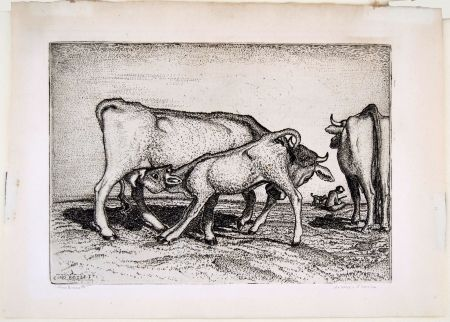 Gravure Bozzetti - LA VACCA E IL BOCCINO (The cow and the calf), fourth version.
