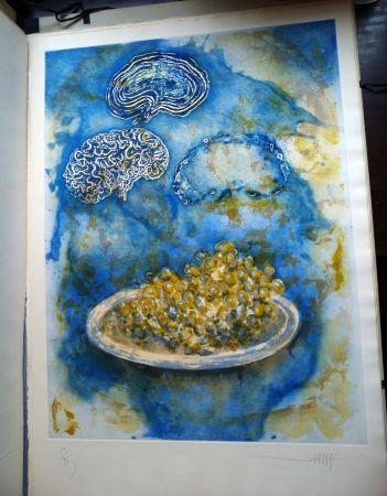 Livre Illustré Amat - La Ventada del somni