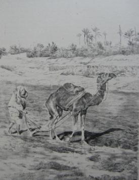 Lithographie Lunois - Laboureur du Kef
