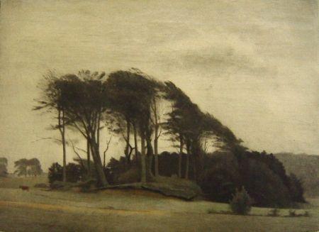 Manière Noire Ilsted - Landscape At Fredensborg
