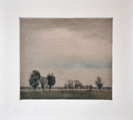 Manière Noire Ilsted - Landscape In Falster