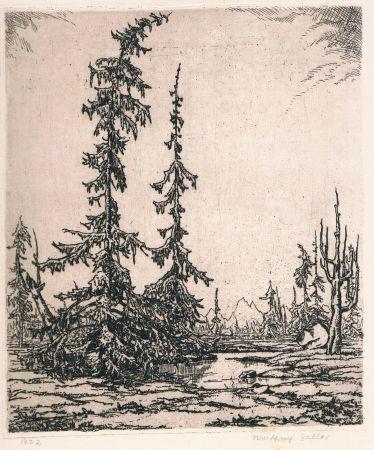 Gravure Zeller - Landschaft