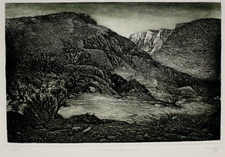 Eau-Forte Et Aquatinte Müller - Landschaft mit Strauchwerk / Landscape with Bushes