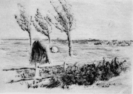 Pointe-Sèche Liebermann - Landschaft mit Zaun