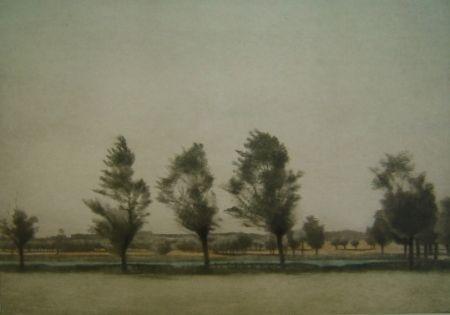 Manière Noire Ilsted - Landskab fra Falster - Landscape at Falster