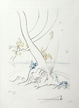 Eau-Forte Dali - L'ARBREDE CONNAISSANCE (THE TREE OF KNOWLEDGE)