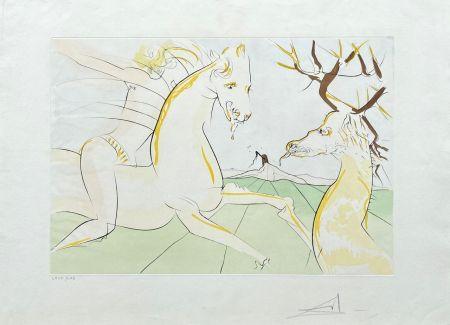 Gravure Dali - Le Cavalier et le Cerf
