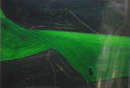 Photographie Arthus Bertrand  - Le champ