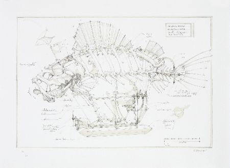 Lithographie Delarozière - Le poisson pirate